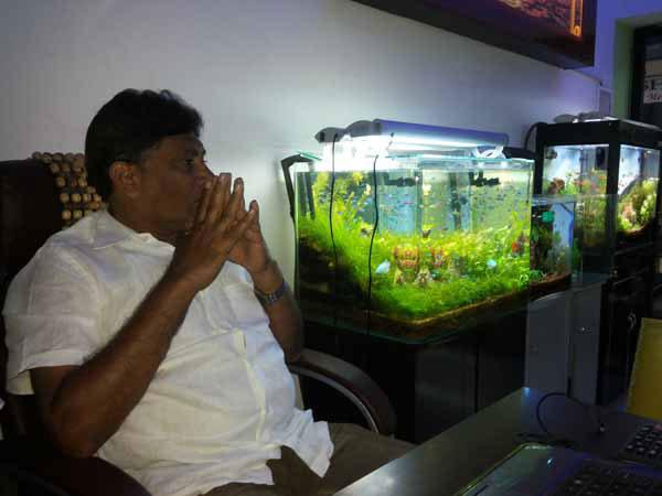 Aquarium Design India