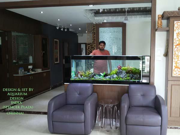 Feng Shui Aquarium In Living Room Blog Avie